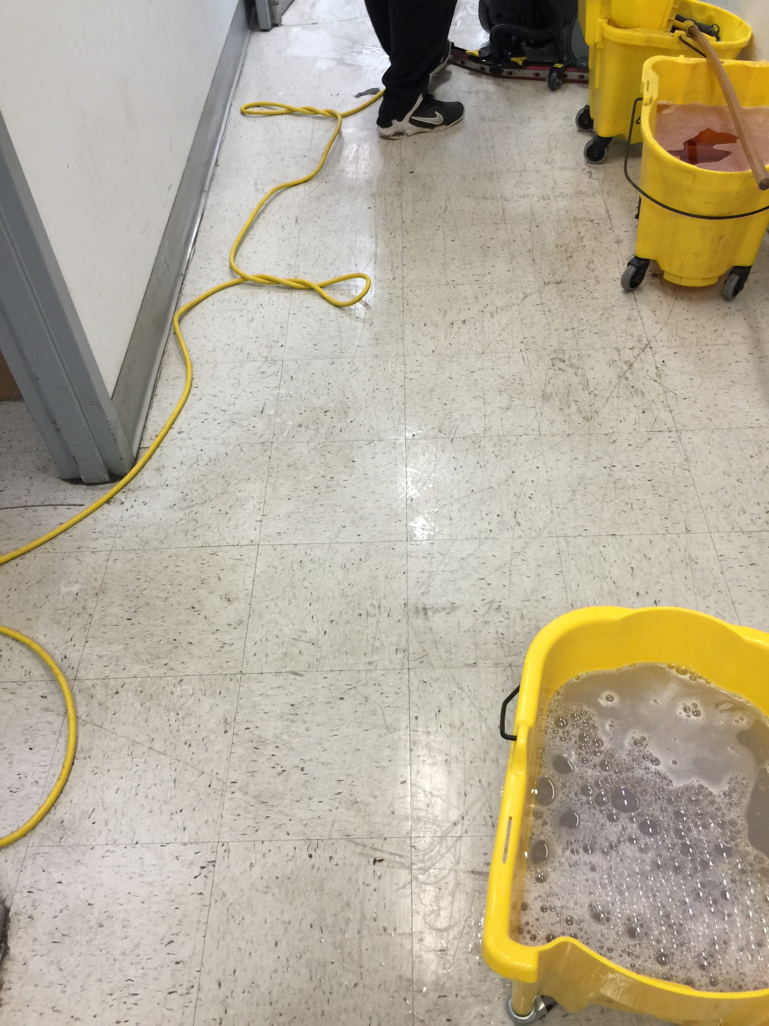 4-d-m-carpet-office-floor-cleaning