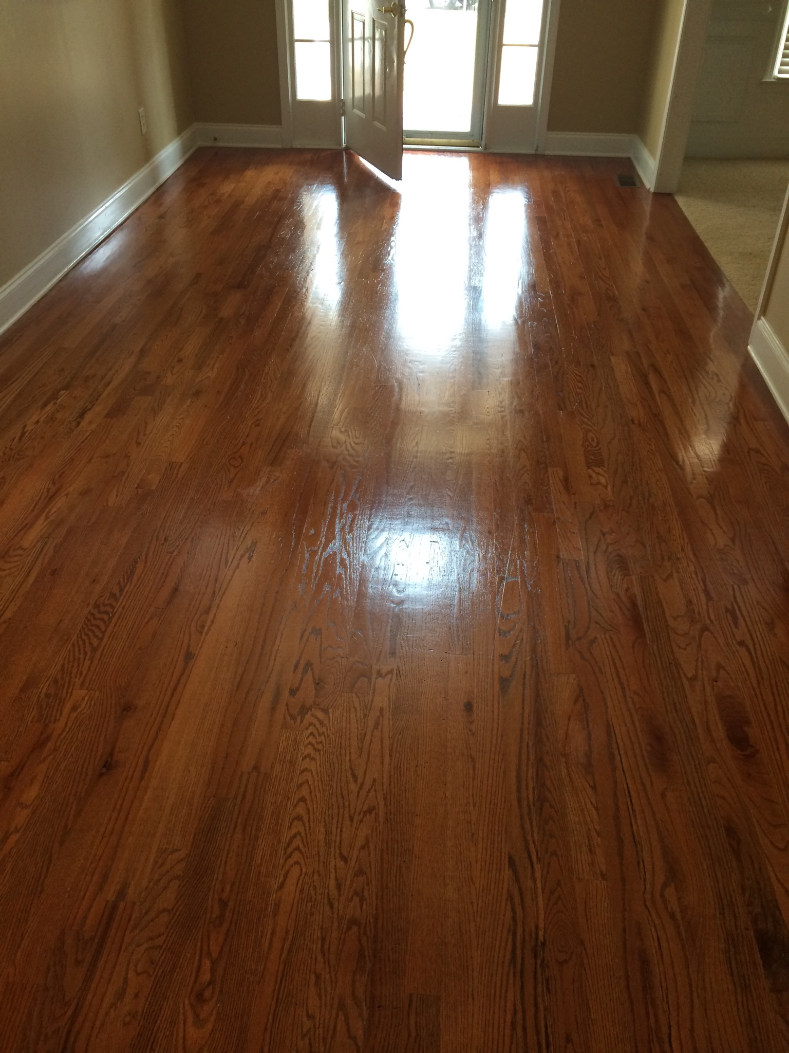 D M Carpet Cleaning - Liburn, GA