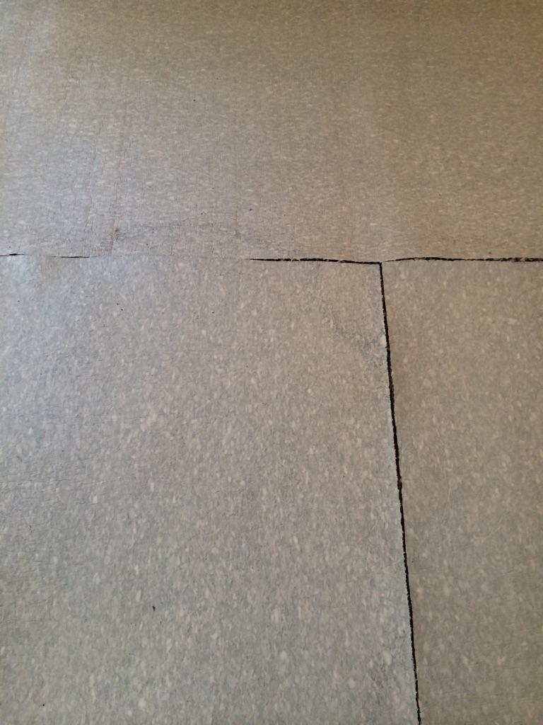 D M Carpet Cleaning - Sandy Springs, GA