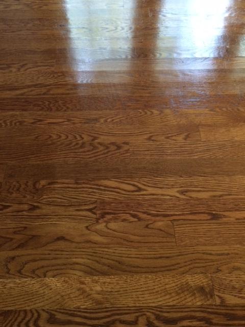 D M Carpet Cleaning -Chattahoochee Hills, GA