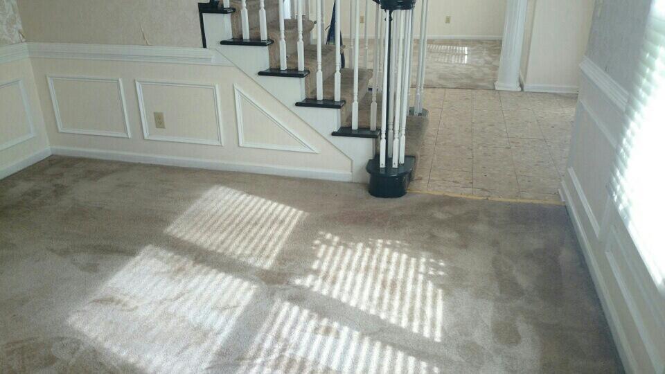 D M Carpet Cleaning - North Druid Hills, GA