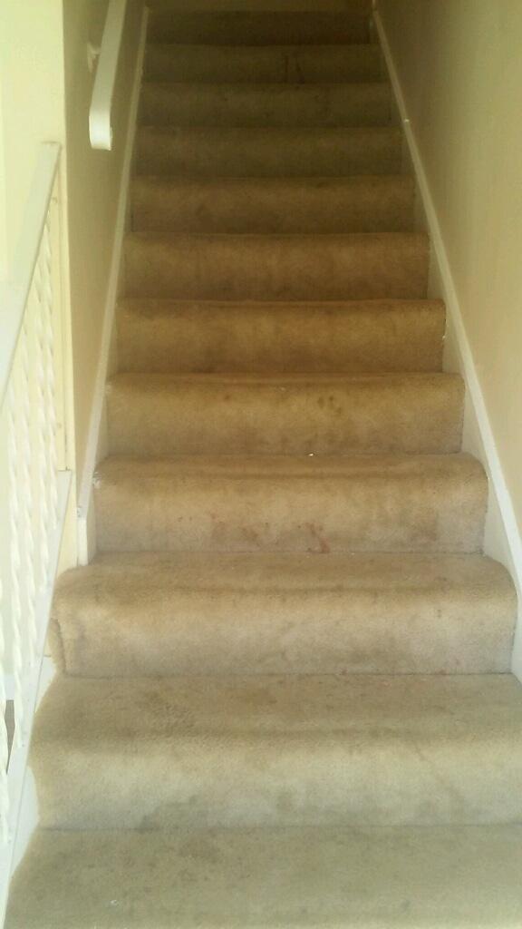 D M Carpet Cleaning - Gresham Park, GA