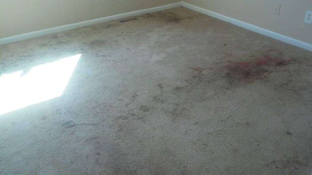 D M Carpet Cleaning - Stonecrest, GA