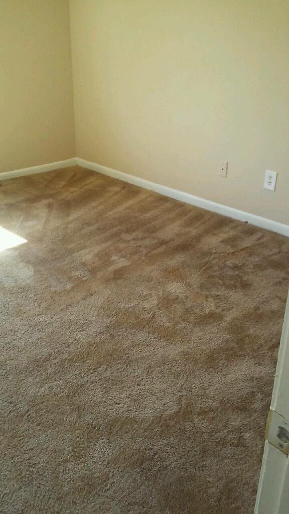 D M Carpet Cleaning - Lawrenceville, GA