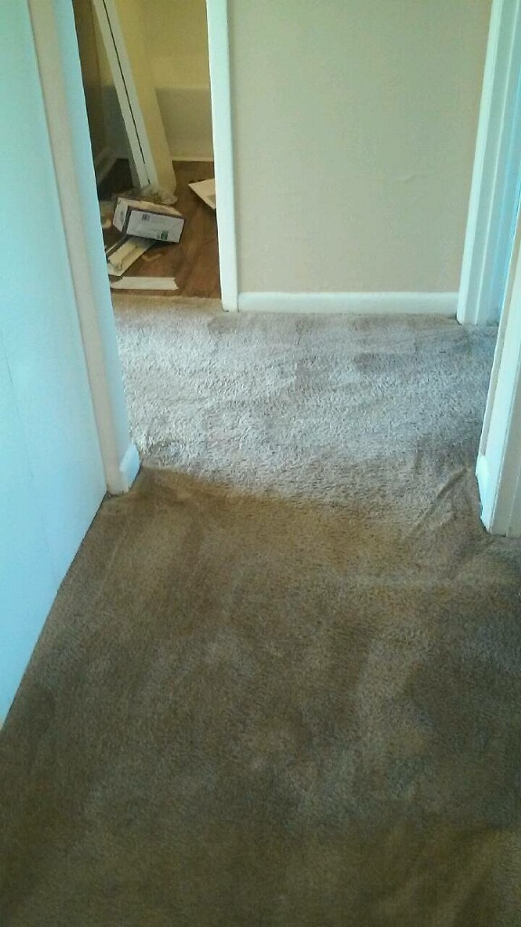 D M Carpet Cleaning - Norcross, GA