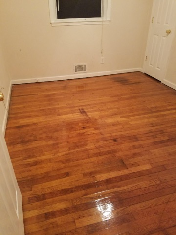 D M Carpet Cleaning - Tucker, GA