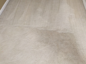 D M Carpet Cleaning - Avondale Estates, GA