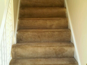 D M Carpet Cleaning - Panthersville, GA