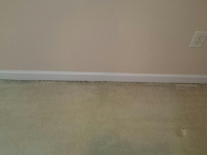 D M Carpet Cleaning - North Druid Hills, GA