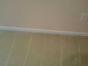 D M Carpet Cleaning - Candler-McAfee, GA