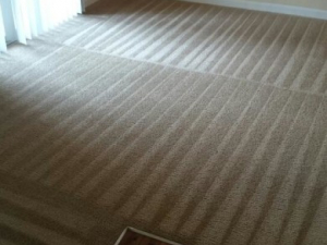 D M Carpet Cleaning - North Decatur, GA