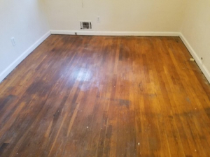 D M Carpet Cleaning – Sandy Springs, GA